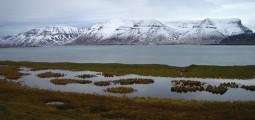 """Dýrafjörður. Vannene i forgrunnen kalles i dag for """"Gisles øyne"""". Foto: Carline Tromp"""