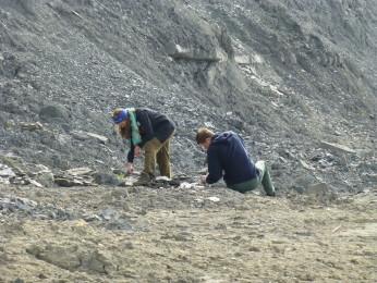 Meg og Krzysztof leter etter ammoniter langs Jura kysten