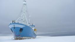 LANCE i isen