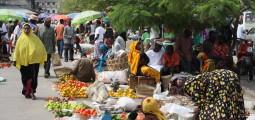I Tanzania råder en sterk mistenksomhet til samarbeid mellom stat og privat næringsliv. Foto: Christina Ek