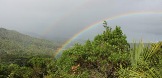 Etter en regnfull dag kommen oppmuntringen; en nydelig regnbue. Photo Pauline J. Kajl
