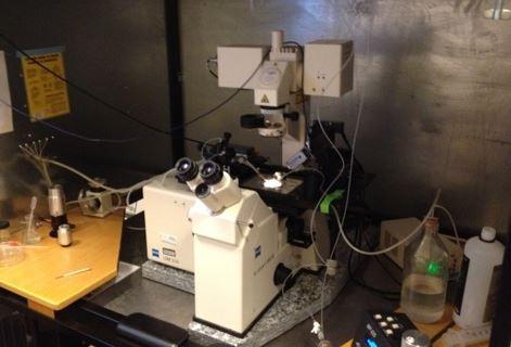 Her utføres eksperimenter på enkeltceller. Foto: Andy Edwards.