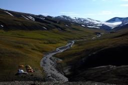 Flowerdalen på Svalbard, der beinlaget ligger oppe i venstre side av åsen. Foto: Jørn Hurum.