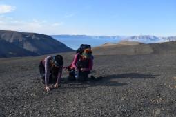 PhD-stipendiat Aubrey Roberts og jeg leter etter knokler fra marine reptiler. Foto:  Jørn Hurum.
