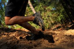 Ren fysisk aktivitet er viktig for helhetlig funksjon hos eldre. Foto: Kenny Holston / Flickr Creative Commons.