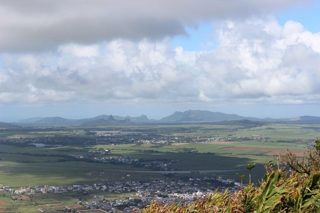 Mauritius kun 5 prosent orginal skog igjen på øya